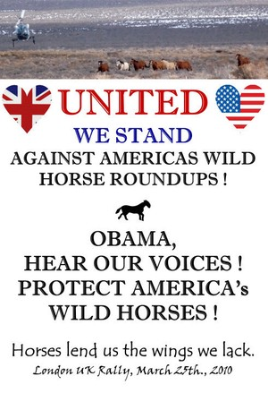 Please speak up to save the Wild Horses of America!